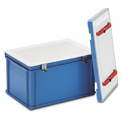 Insulated box and removable lid with holder for cooling elements